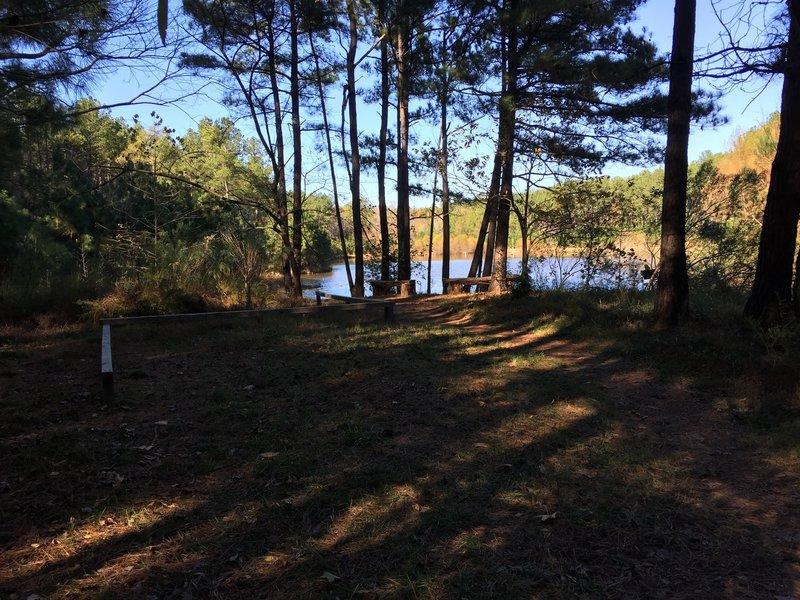 Lake/pond on Crow Branch Overlook Loop Trail