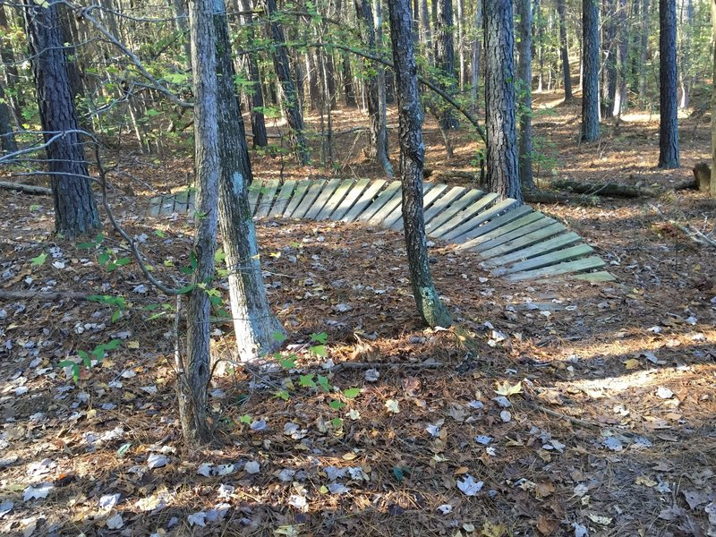 Constructed mountain bike trail berm on Crow Branch Overlook Loop Trail
