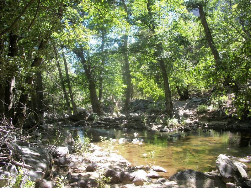 You'll cross Crown Creek on the Middle Fork Trail as you make your way through the Tehipite Valley.