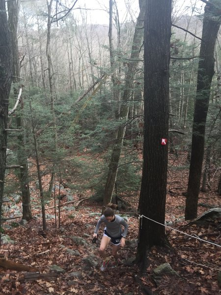 """The """"rope assist"""" section of Red Trail is one of the Park's most difficult sections."""