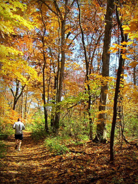 Running along the inner loop of the Spring Valley Trail at Cliff Cave County Park