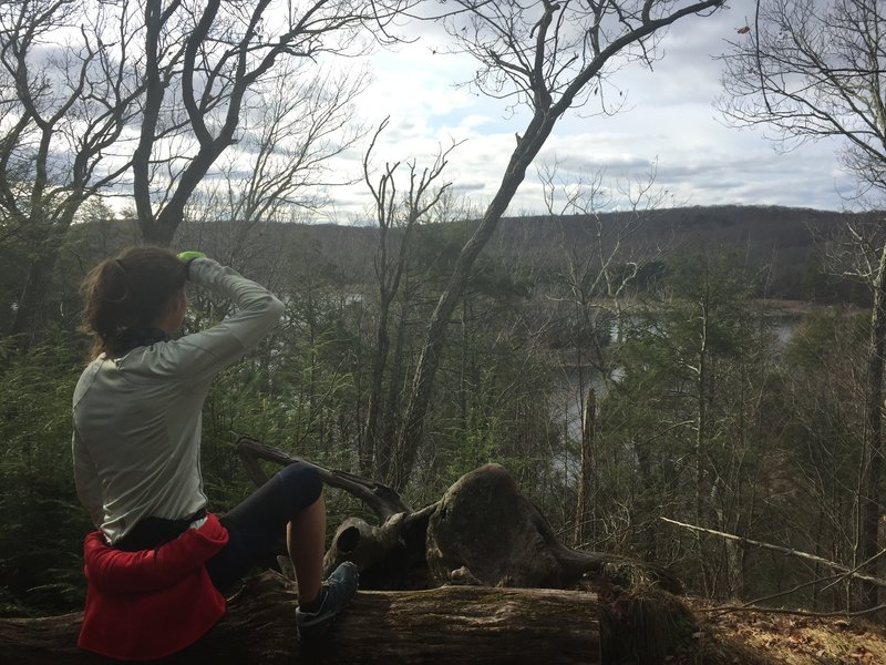 An awesome viewpoint over Saugatuck Reservoir, complete with a bench to sit on!