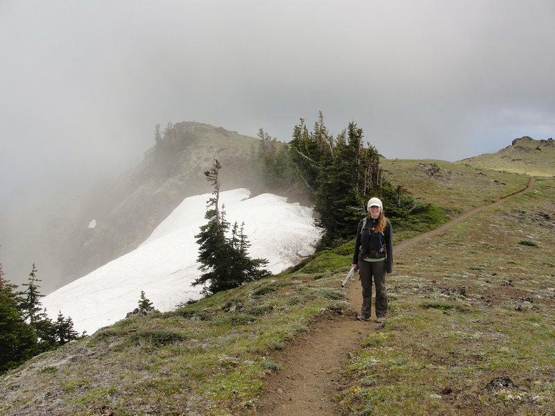 Fog near the summit of Mount Townsend.