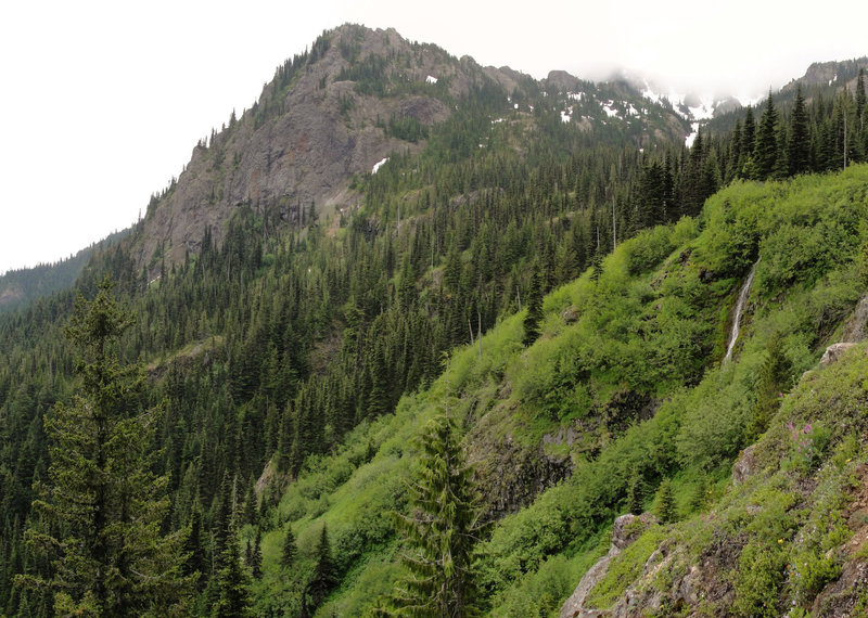 View from Olympic National Forest Mount Townsend Trail.