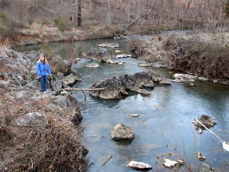 Creek - Johnston Mill.