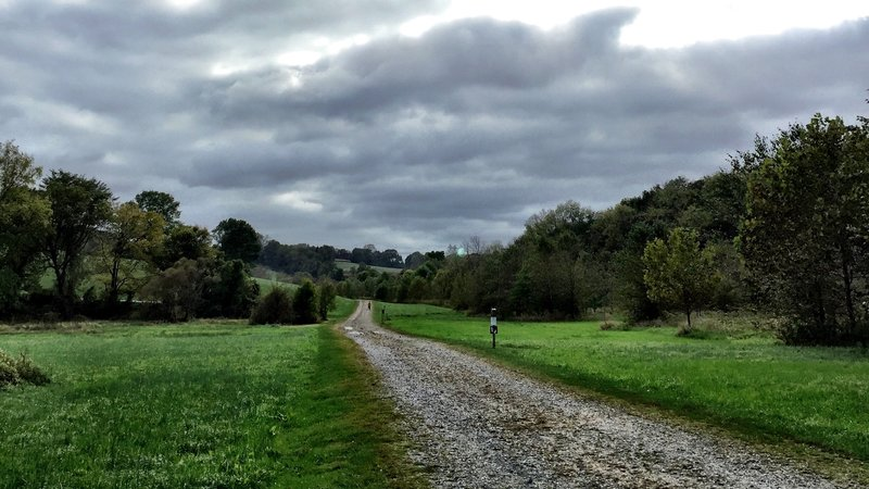 The Green Loop Trail stretching out through Stroud Preserve.