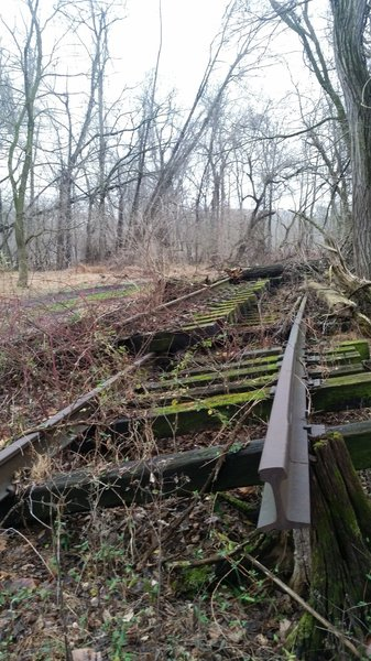 Recent railway repair at the downriver end of the trail left some items behind.
