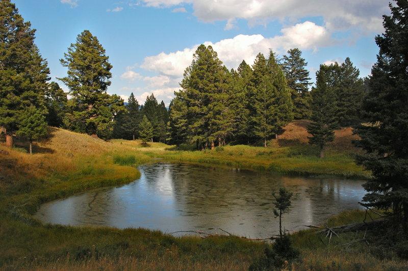 Yellowstone NP - Beaver Ponds Loop.