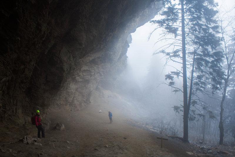 Alum Cave in the fog