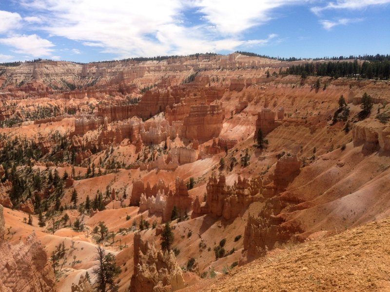 View of Bryce Point and the start of Under the Rim Trail in the distance.