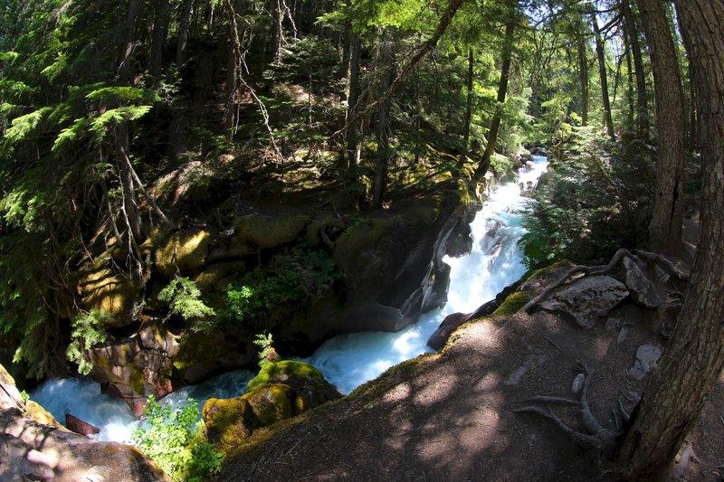 Avalanche Creek.