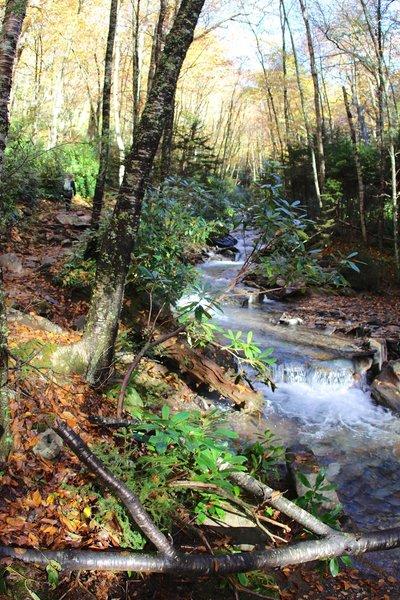 Trail on stream path