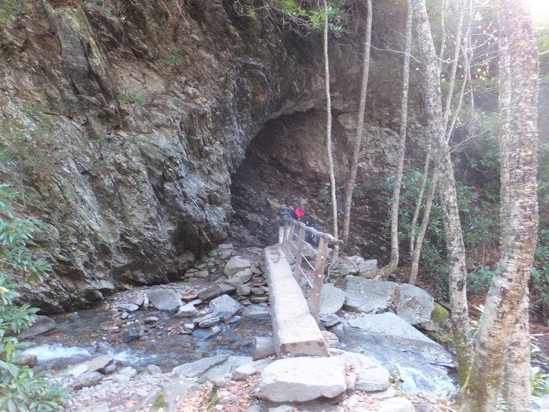 Log Bridge on Alum Cave Trail.