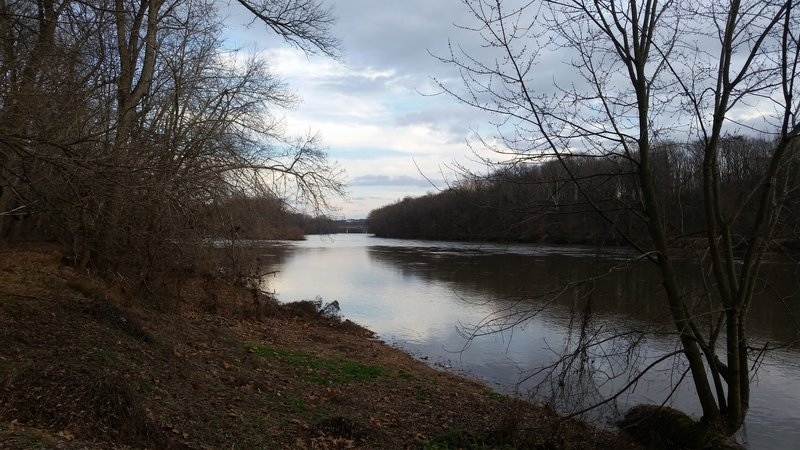 View of the Schuylkill River looking downriver from the River Trail.