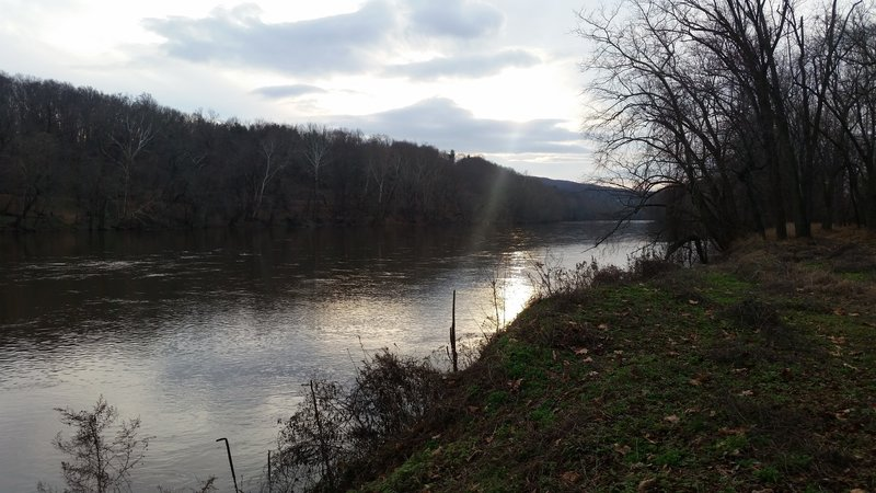 View of the Schuylkill River looking upstream from the River Trail.