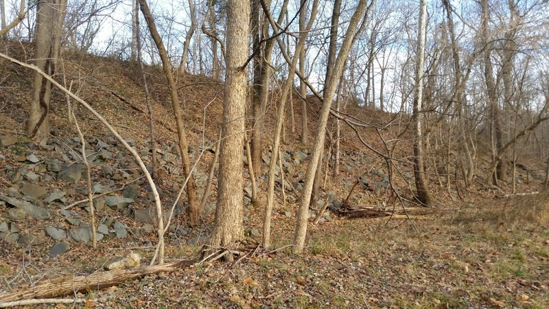 This large berm is part of the Schuylkill River Desilting project 1947-1951.