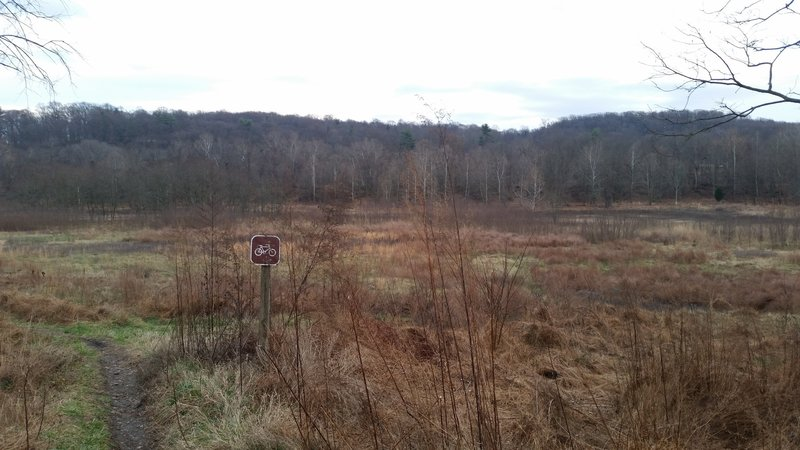 Looking south at the seasonal ponds in the Walnut Hill Desilting area.