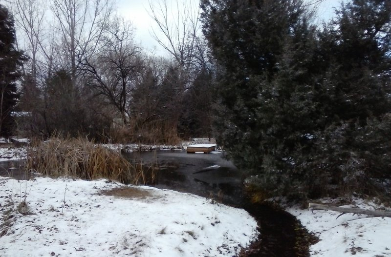 The view of the pond and creek flowing out of it this winter.
