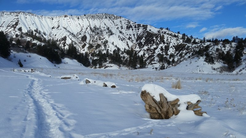 The meadow looking back at the Hogback.