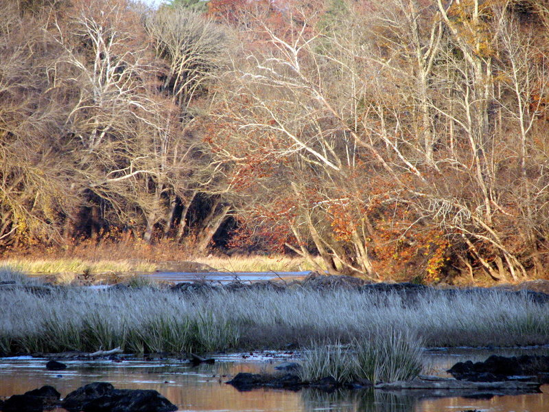 Confluence Rocky and Deep Rivers. White Pines TLC Preserve Pittsboro, NC.