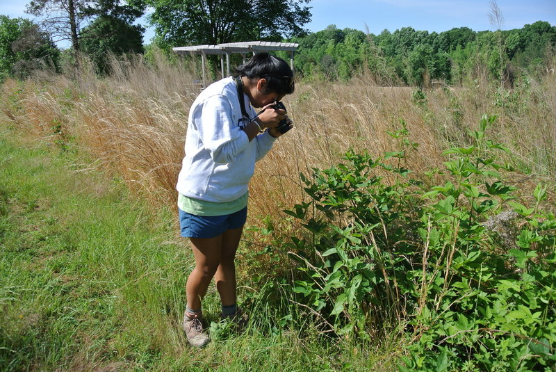 Photographing the grassland along the Holman Loop as part of REI's Introduction to Nature Photography class.