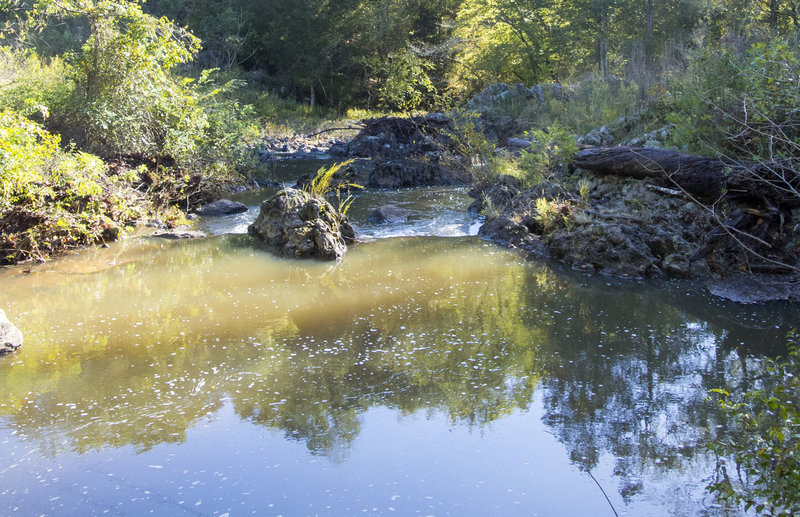 The powerline easement creates a sunny spot of the creek where water accumulates into a convenient swimming hole.