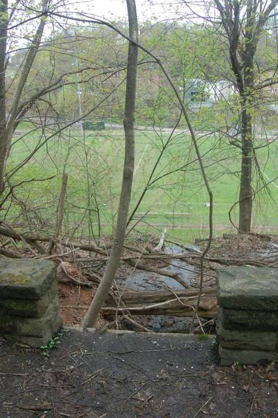 Old foundation stones near the beginning of the trail.