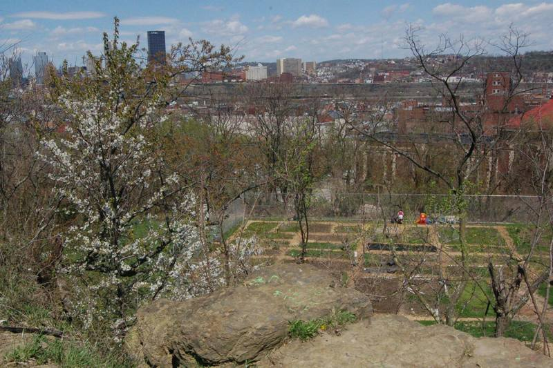 View from the plateau toward Bandi Schaum Field. There are also amazing views of downtown Pittsburgh.