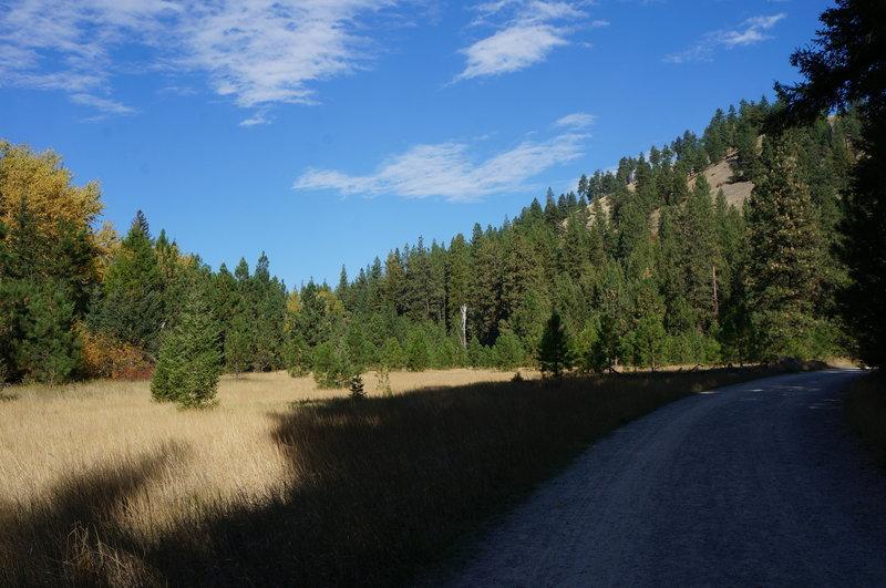 Main Rattlesnake Trail #515
