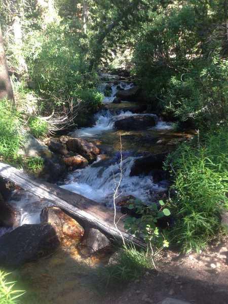 A small bridge over Bishop Creek along the Piute Pass Trail.