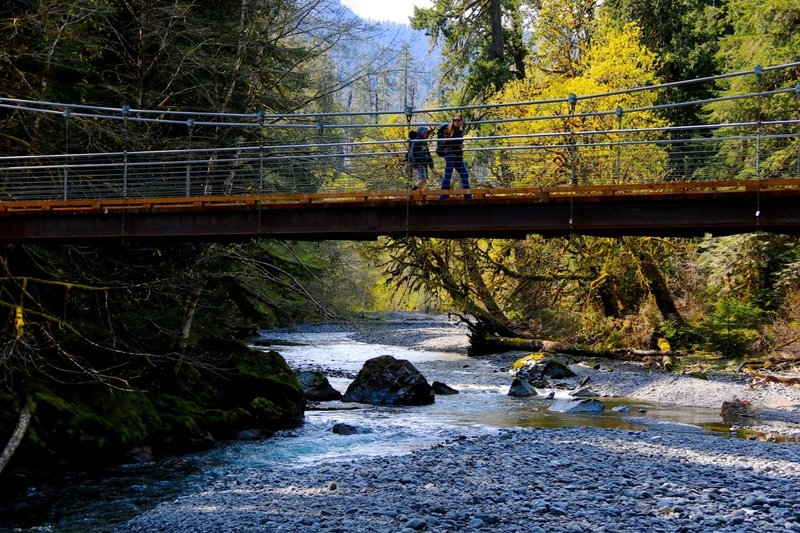 Crossing the North Fork of the Skokomish River in Olympic National Park