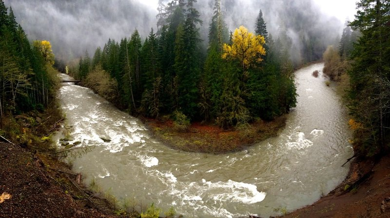 Looking at the Great Bend of the North Fork of the Skokomish River in Olympic National Park
