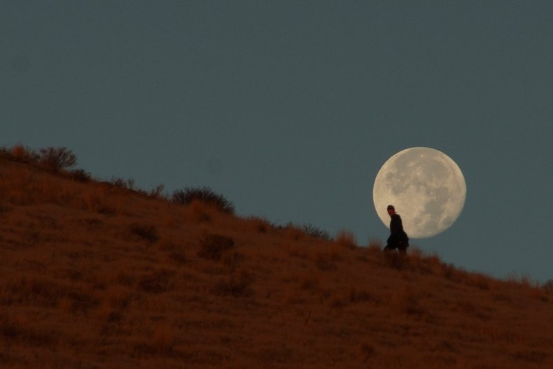 A moonlit walker makes her way up the Canyon Trail.