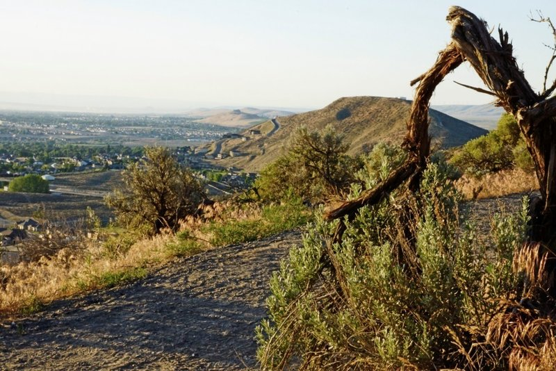 Sagebrush Trail - View towards Little Badger and Kennewick