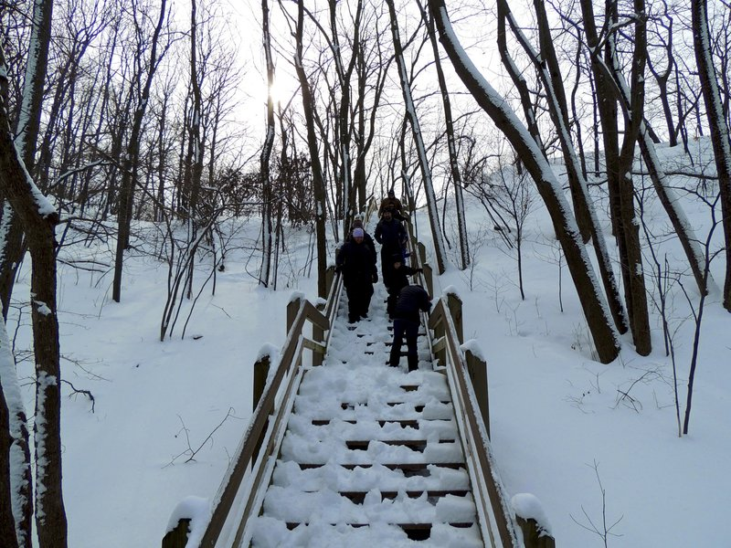 Dune Succession trail stairs.