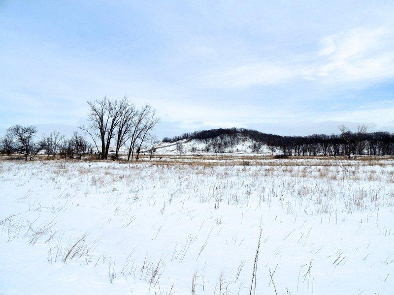 Winter landscape at West Beach.