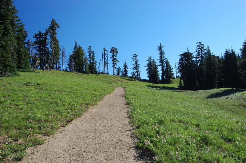 You're not likely to trip in this section of the Garfield Peak Trail.