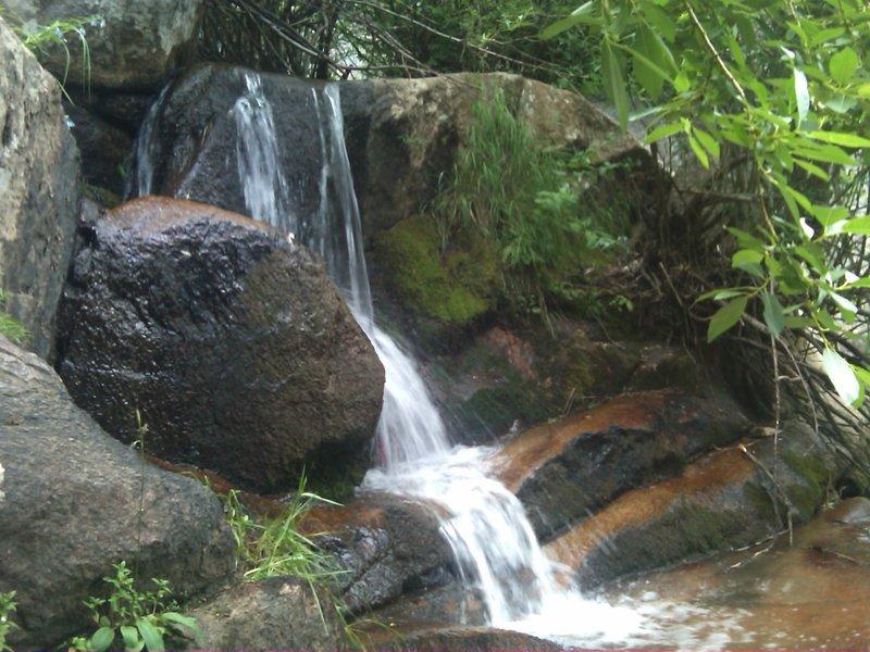 Maxwell Falls tumbles past the rocks on it's way downstream.