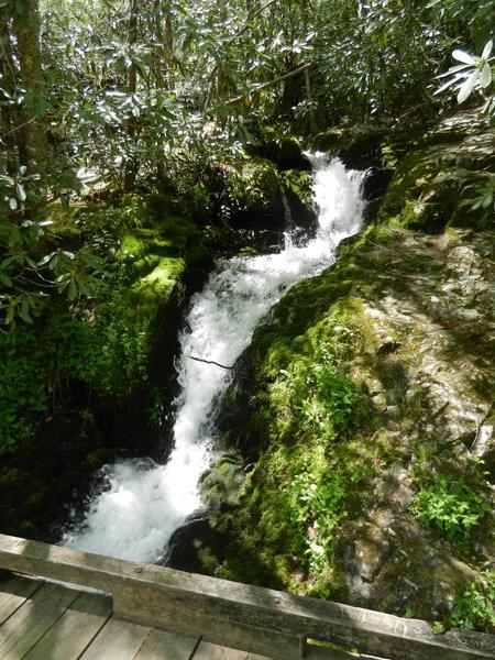 Huskey Branch Falls tumbles under the footbridge into Little River.