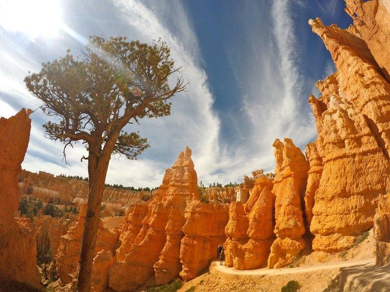 Bryce Canyon Navajo Loop.