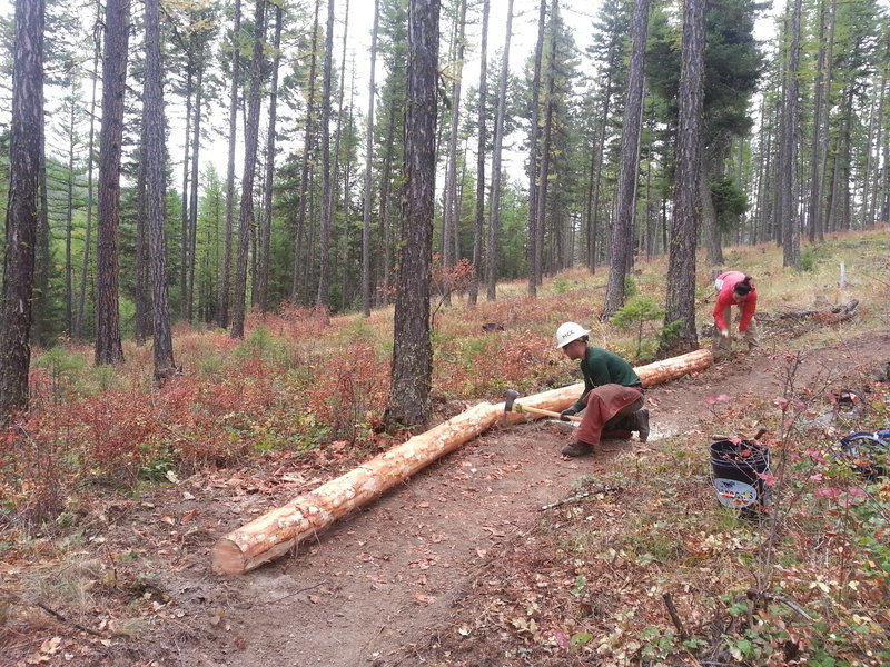 Volunteers creating a banked turn on the new Fenceline Trail.