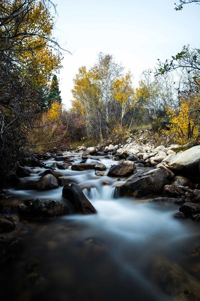 Baker Creek in the Autumn.