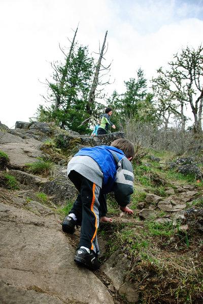 Climb Wesley, Climb!