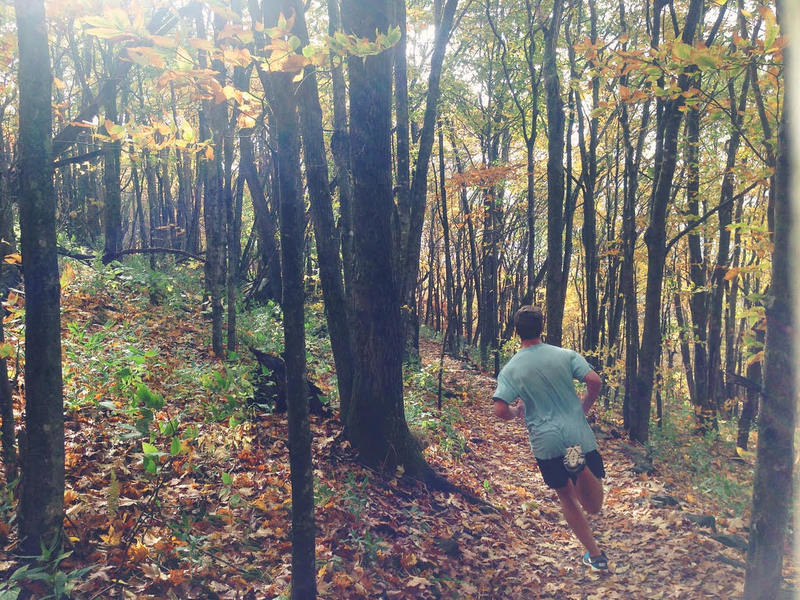Blasting down the Elk Knob Summit Trail in perfect Fall conditions.