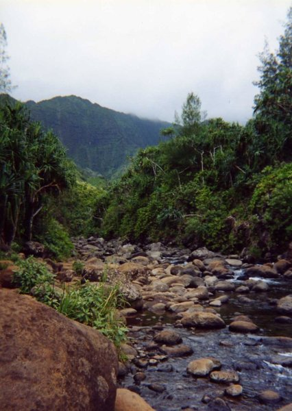 Hanakapi'ai Stream from the Kalalau Trail on the Na Pali Coast