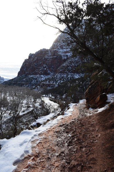 Winter view from the Emerald Pools trail.