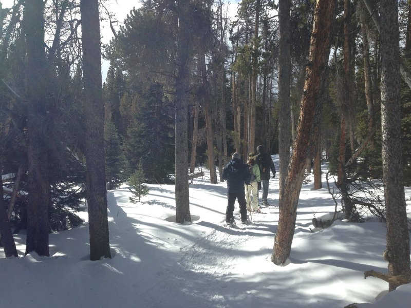 The trail around the lake is forested and makes a great snowshoe on windy days.