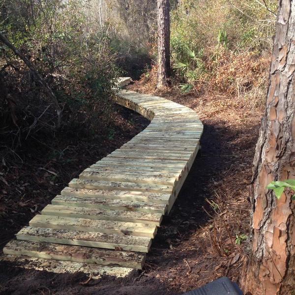 Elevated wooden boardwalk.