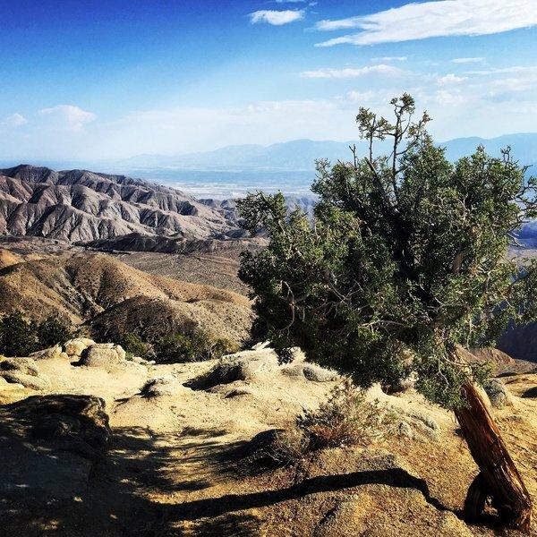 Keys View - Joshua Tree National Park