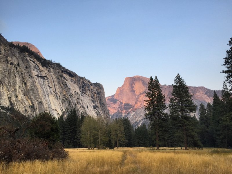 Alpenglow on Half-Dome from Ahwahnee Meadow - Yosemite